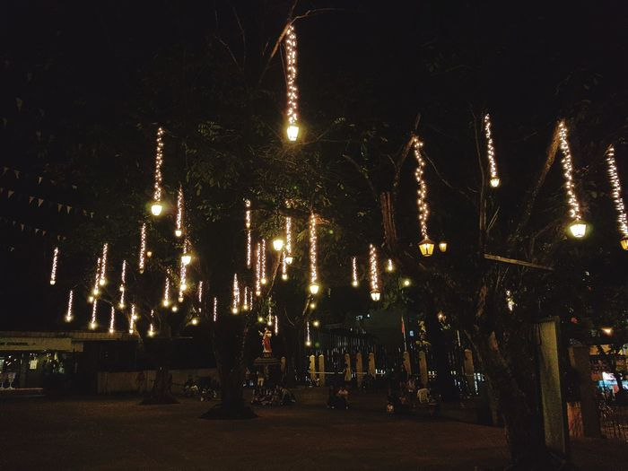 Lights will guide you home Illuminated Night Outdoors Tree Lights
