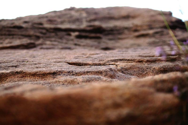 Sony Sand Dune