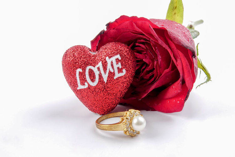 VALENTINE'S DAY CONCEPT WITH RED ROS Greeting Love Valentine's Day  Bracelet Close-up Jewelry Ring Rose - Flower