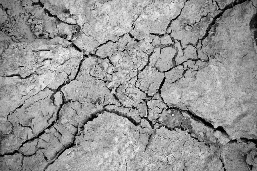 Arid Climate Backgrounds Close-up Cracked Drought Drought And Floods Drought Global Warming Dry Dry Weather Environment Extreme Close-up Extreme Terrain Full Frame Global Warming Global Warming Global Warming Effect Mud Natural Pattern Nature Outdoors Sand Terrain Textured  Weather