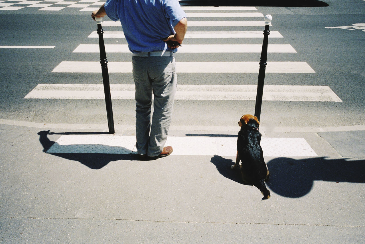 Low section of man with dog standing on road
