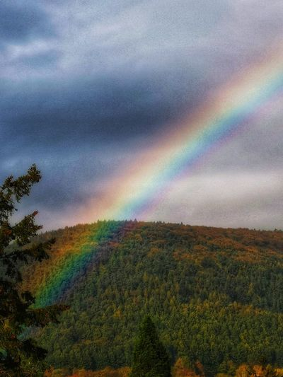 Somewhere over the rainbow 🌈 EyeEm Best Shots EyeEm Nature Lover Relaxing EyeEm Gallery Popular Photos EyeEm Best Shots EyeEm Selects Beauty In Nature Rainbow Multi Colored Spectrum Sunset Rainbow Mountain Oil Spill Sky Landscape Cloud - Sky Tranquil Scene Tranquility Non-urban Scene