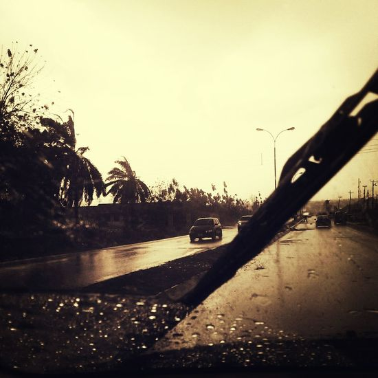 Taking Photos Rain Drops Sunshine Nature Swish and swash/ back and forth/the old wiper goes.