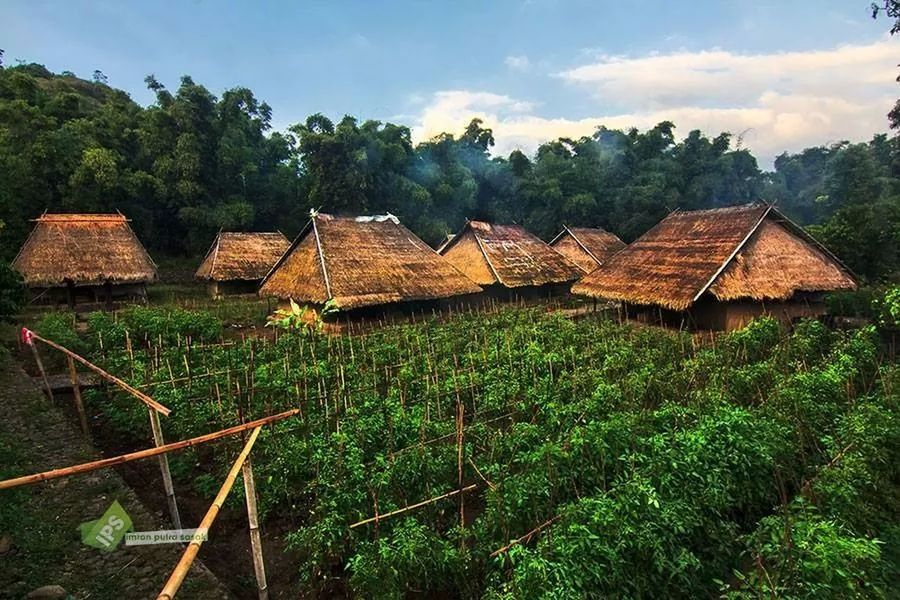 SembaLun Traditional Village Imranputrasasakgalery Culture Lombok-Indonesia Landscape #Nature #photography