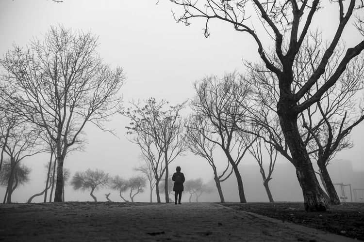 Silhouette man standing by bare trees on field against sky