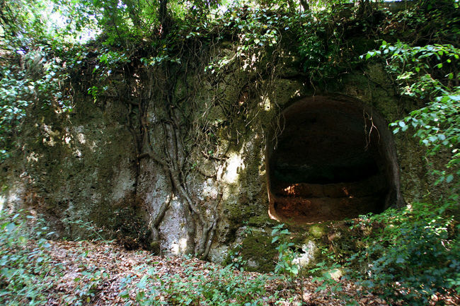 Ancient tomb excavated in the tuff along the Via Amerina in Lazio Archeology Italia Road Rock Rock Formation Tomb Acient Acient Arquitecture Acient Rome Amerina Archeological Site Beauty In Nature Branch Cave Day Etruria Forest Lazio Nature No People Outdoors Plant Tree Tuff