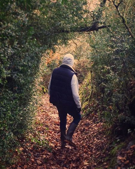 Rear View Walking Full Length Real People Nature One Person Forest Silhouette The Secret Spaces Wildlife & Nature Treetreet boy] Constrast treeDayyLifestylessAutumnnOutdoorssGrowthhWomennGrasssYoung AdulttAdulttPeoplee