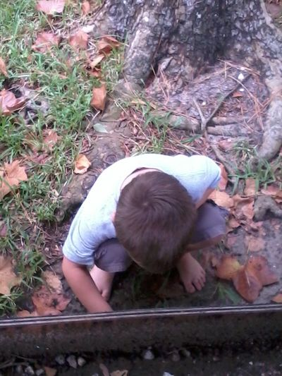 Autumn Childhooddays Curiosity Focused Ground Hunting For Crabs My Lil Davian Searching