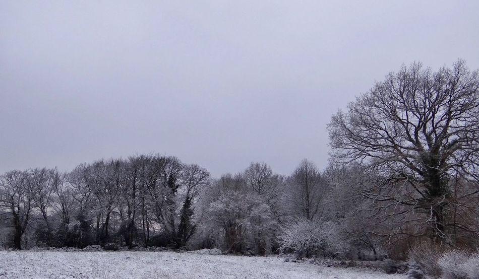 Landscape Snow Walking Promenade Limousin France