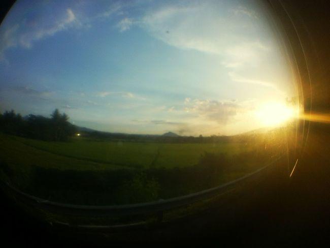 Summer vibes Summer Sunlight Landscape PhonePhotography Photography First Eyeem Photo