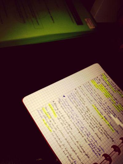 Leren op een zondag.