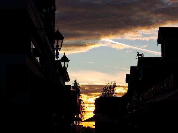 Japan Sunset Relaxing Sunshine Taking Photos Hello World Hi! Vancouver BC Canada