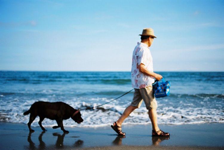犬とおじさんと海と 犬 おじさん 夏 海 フィルム Film