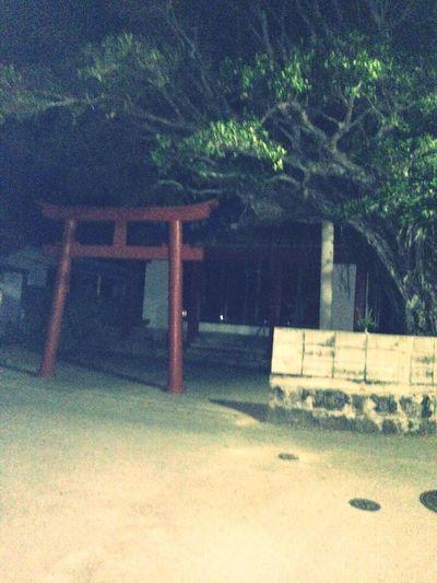Okinawa 阿嘉島