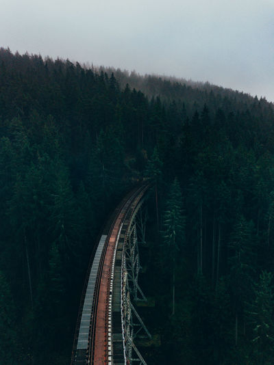 Ziemesthalbrücke Germany DJI Mavic Pro EyeEmNewHere Scenic Tranquility Trees Beauty In Nature Day Fog Foggy Forest Growth High Angle View Mountain Nature No People Outdoors Pine Woodland Rail Transportation Railroad Track Scenics Train - Vehicle Transportation Tree Woods