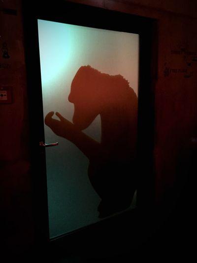 Monkeybar Silhouette