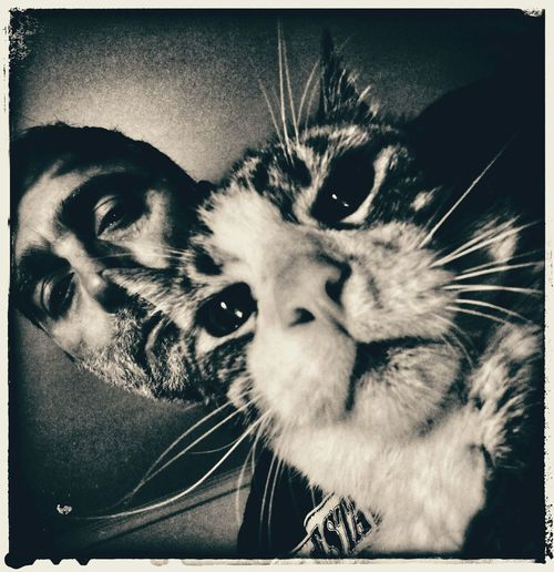Selfportrait With Cat PhonePhotography Domestic Animals Cat Pets Black And White Portrait