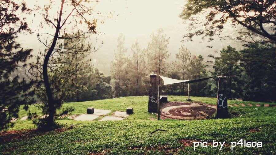 Good Morning World! Morning Light, Morning Walk, Morning Rituals, Morning Glory by P4lsoe