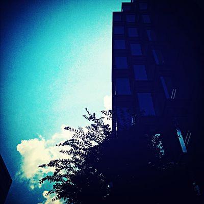 今年冷夏って聞いたんですけど?(´Д` ) Silhouette OSAKA Street Photography Sky