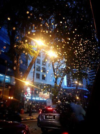 Rain Bohem