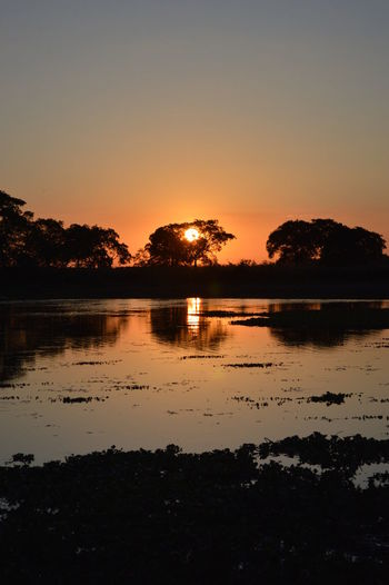 Sunset on the island Sky Water Sunset Tranquility Tranquil Scene Scenics - Nature Beauty In Nature Reflection Silhouette Tree Nature Lake No People Plant Copy Space Idyllic Orange Color Non-urban Scene Outdoors Island