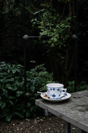 Lifestyle Photography Botany Coffee Day Flower Food Photography Foodphotography Garden Garden Photography Green Green Color In The Garden Leaf Little Break Nature Outdoors Park Pause Plant Plant Life Solitude Teatime☕️ Time For Tea With Hendrick's