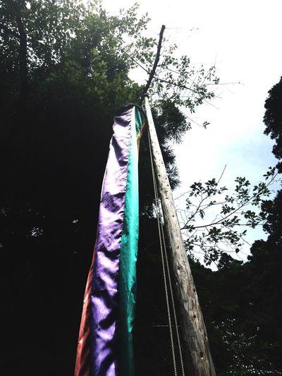 Shrine Summertime Japan Japanese  秋葉神社