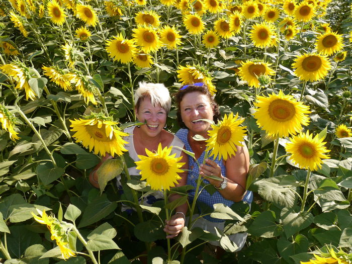 two women standing between sunflowers Best Ager Sunflowers🌻 Sunflowers Field Standing In The Field Summer Views Summer Vibes High Angle View EyeEm Nature Lover EyeEm Gallery Flower Photography Flower Collection Portrait Photography Enjoying Life Happy People Flower Head Flower Portrait Child Smiling Togetherness Bonding Happiness Cheerful Males  In Bloom Blooming 50 Ways Of Seeing: Gratitude