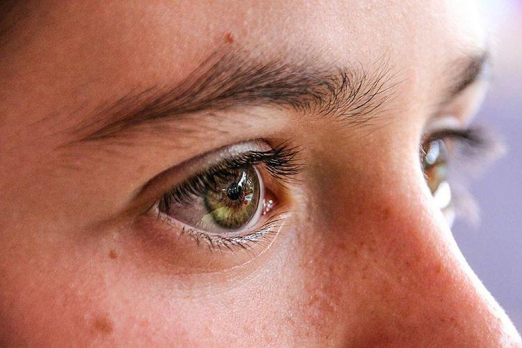 Human Eye Human Body Part Close-up Eyesight Eyebrow Eyelash Iris - Eye Portrait Eyelid People Eyeball Human Skin Adult Young Adult One Person Skin Adults Only Eye Color Day One Young Woman Only Nature Macro Macro Photography