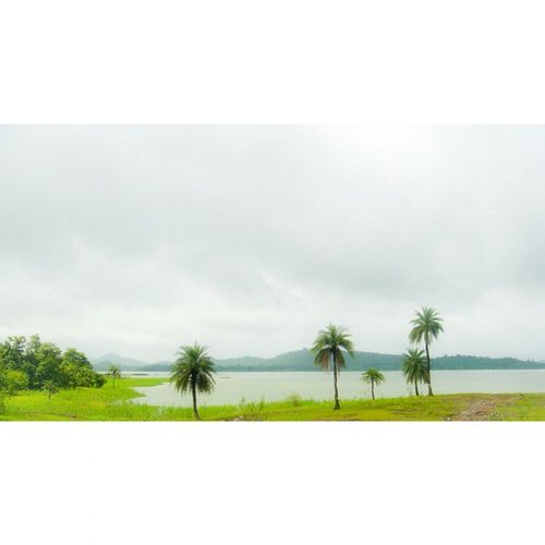 I yearn for a place untouched by man! Pinetrees Sky Mountain Lake RainyDays Latepost Panaroma Greenary Nature Roadtrip Traveller Travelling Explore 🎑⛅🌾🍂🍁🍃🌴🌴🌴