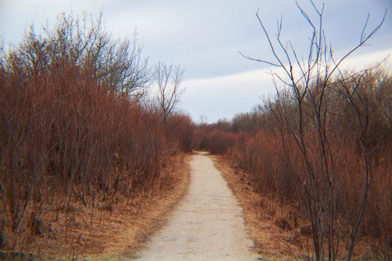 Trail Prairie Forest Path Red And Orange Spring Overcast Skies Manitoba Canada The Great Outdoors - 2016 EyeEm Awards