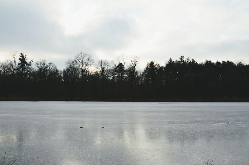 Vscocam Winter