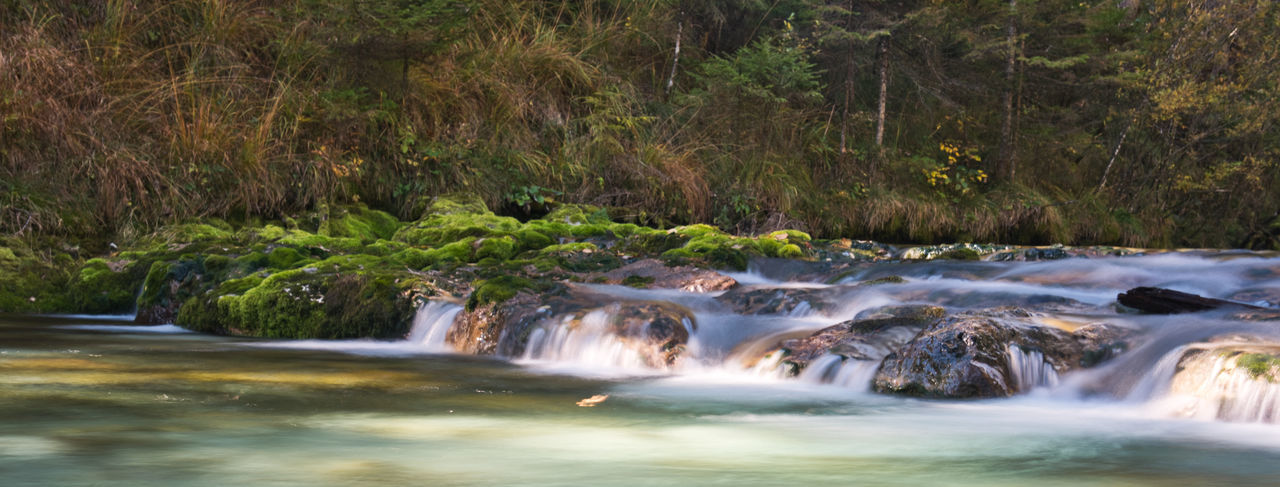 Beauty In Nature Blurred Motion Day Environment Flowing Flowing Water Forest Land Long Exposure Motion Nature No People Outdoors Plant Power In Nature River Rock Scenics - Nature Stream - Flowing Water Strömung Tree Wasser Wasserfall Water Waterfall EyeEmNewHere