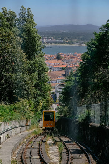 High angle view of train amidst trees
