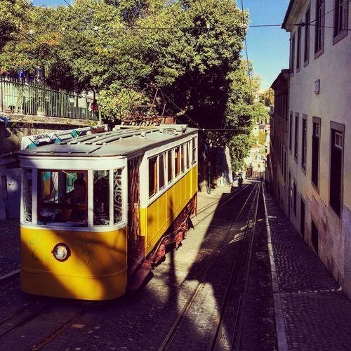 Lisbon tram. City Lisbon - Portugal Tram Culture Day Lisboa Lisbon Lisbontram Public Transportation Rail Transportation Transportation Tree Yellowtram