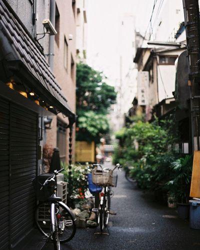 人形町 Film Filmphotography Nikon Nikonf2 Tokyo Japan