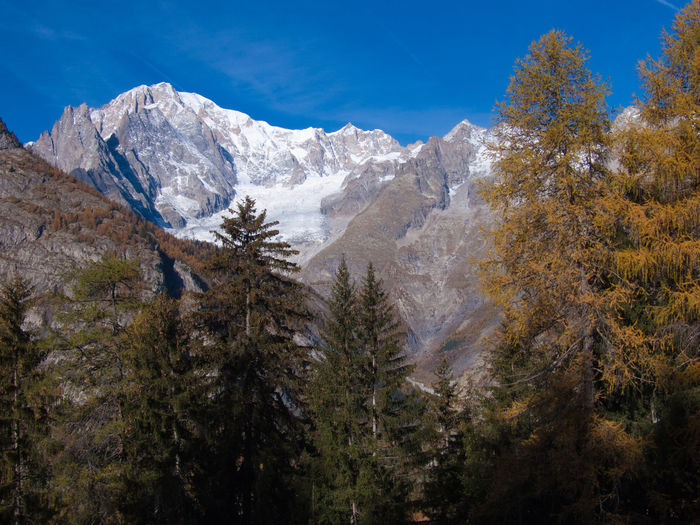 mont blanc,suche courmayeur,val d'aoste,italy Beauty In Nature Blue Day Growth Idyllic Landscape Majestic Mountain Mountain Range Nature No People Non Urban Scene Non-urban Scene Outdoors Remote Scenics Season  Sky Snowcapped Mountain Sunny Tranquil Scene Tranquility Tree