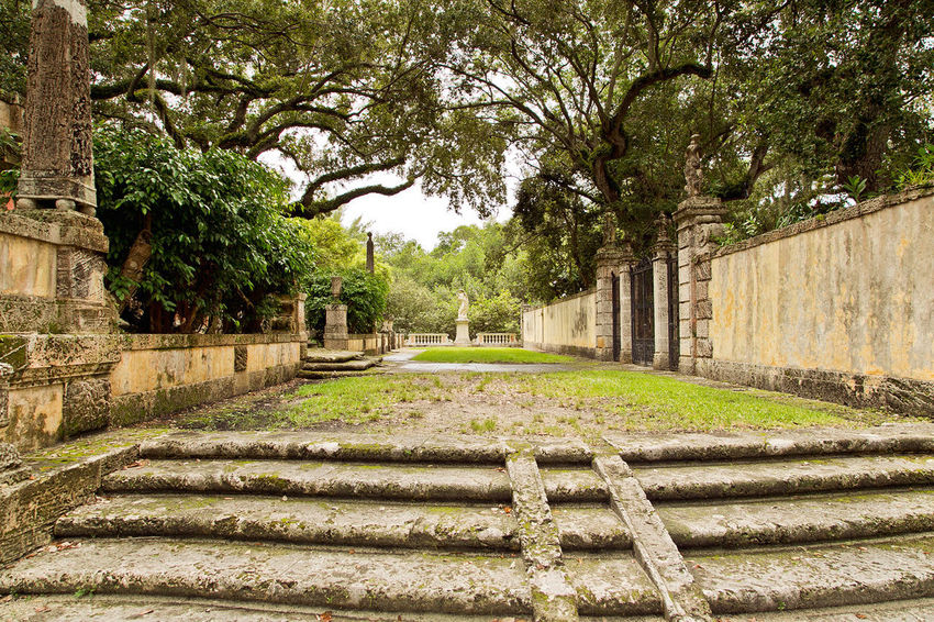 Vizcaya Gardens Day Growth Nature No People Outdoors Tree