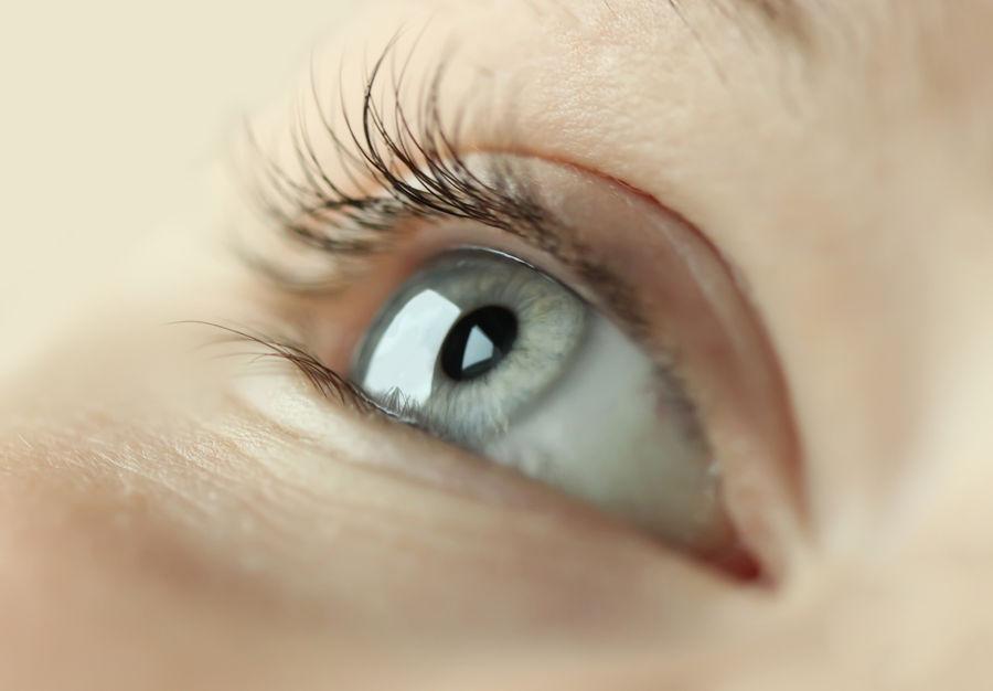 Eye Macro Photography Child Close Up Close-up Closeup Eye Eyeball Eyebrow Eyelash Eyelashes Eyelid Eyesight Human Human Body Part Human Eye Human Eyes Iris - Eye Looking Macro Oculist One Person Ophthalmologist Optic Optical Real People