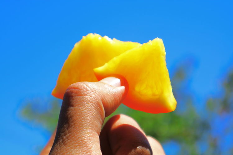 Cropped image of person holding orange slices against sky