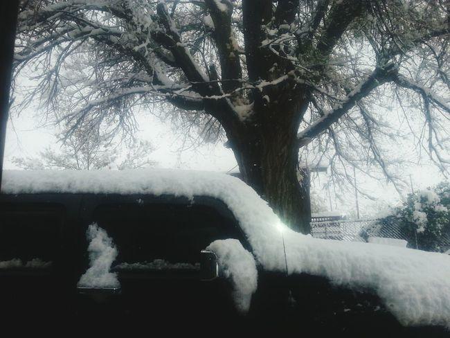 Trinidad ❤❤ Colorado Springtime Snow ❄ Cold But Beautiful