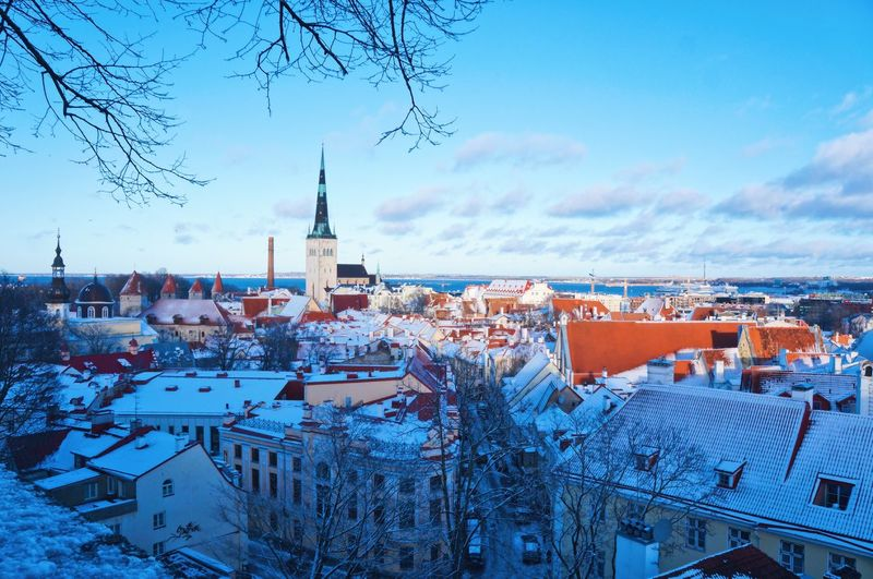 The best travel is traveling with you. Tallinn Oldtown Top View Travel Travel Destinations Tranquil Scene Tranquility Sightseeing Winter Perspective Estonia Photography Architecture Building Exterior Sky Built Structure Winter Nature Cold Temperature Cloud - Sky City Snow Day Building Water High Angle View Cityscape Frozen Bare Tree Outdoors