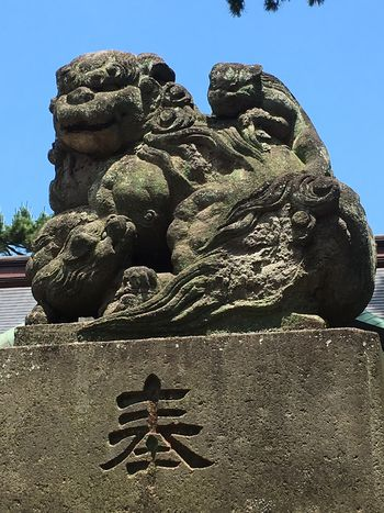 No People Shinto Shinto Shrine Nature Ground Guardian Lion-dog At Shinto Shrine Shiny Day Early Summer June 2017 Tokyo Tokyo,Japan Underthesun Sunshine 東京 神社 境内 初夏 太陽の下 狛犬
