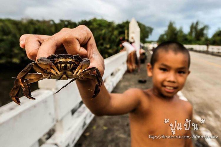 Small And Swift keys crab Boys Mischievous Enjoying Life Mangrove Forest Trat Thailand Eyemthailand EyeEm OpenEdit