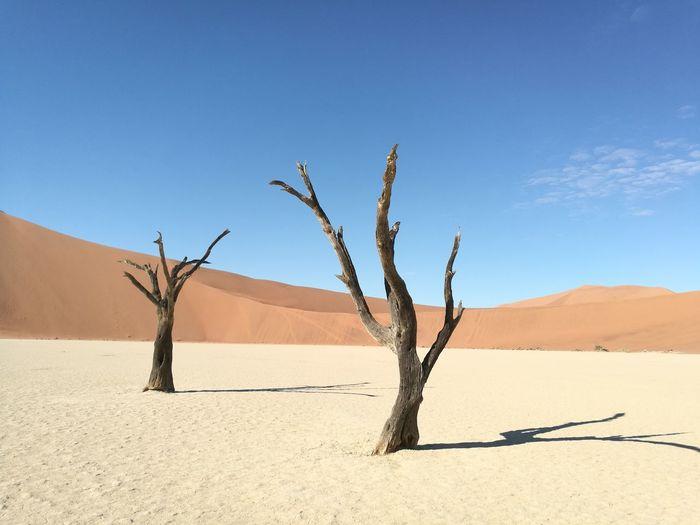 Namibia Namib Desert Namib Dunes Namibia Landscape NamibiaPhotography