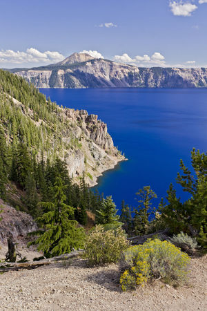 EyeEm Selects Crater Lake Oregon PNW PNWonderland Pacific Northwest  Oregonexplored Oregon Beauty Crater Lake National Park Mountain Landscape Blue Pinaceae Scenics Snow Sea Mountain Peak Nature Pine Tree Beauty In Nature Outdoors Travel Destinations No People Tranquility Mountain Range