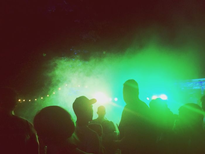 Group of people in concert at night