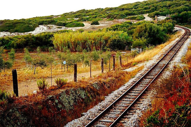 Railroad Track Algajola Corsica Field Rails Landscape Nature Green Color The Way Forward Rural Scene Agriculture Plant Grass Colourful