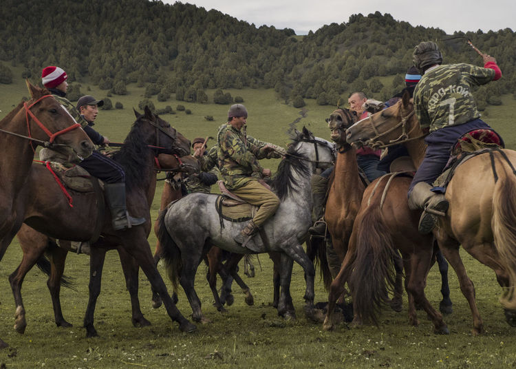 Group of people riding horses on field