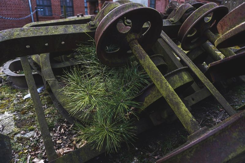 Metal No People Day High Angle View Green Color Nature Outdoors Close-up Wheel Machinery Sunlight Abandoned Industry Rusty Large Group Of Objects Growth Transportation Mode Of Transportation Machine Part Iron - Metal